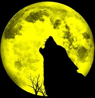 howling dog full moon