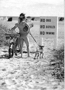no dogs bikes beach zan girl