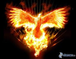 PhoenixRising no 2